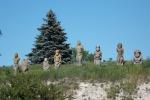 Каменные бабы вИзюме